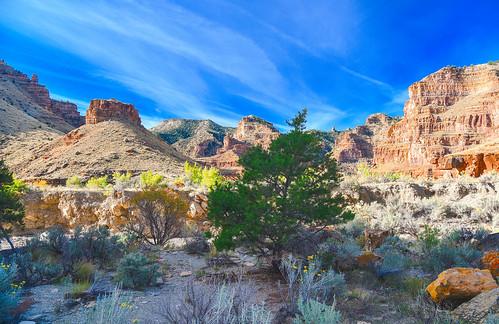 ninemilecanyon nine mile canyon utah duchesnecounty landscape travel hike explore