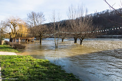 La Saône en crue 24 Janvier 2018