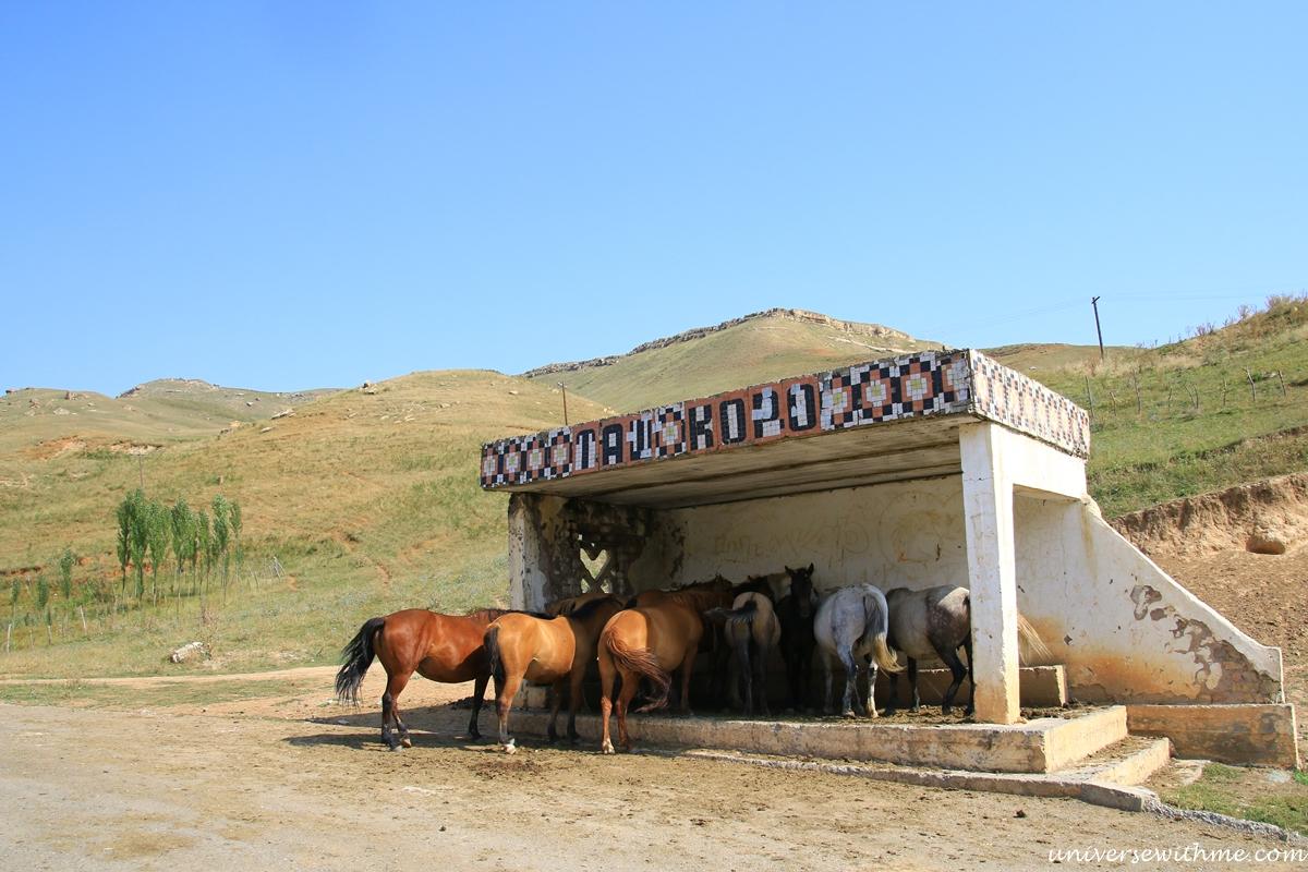 Kyrgyzstan Travel_030