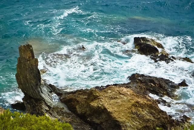 Sea Rock Needle 1