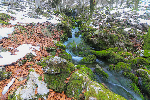Parque Natural de Gorbeia #DePaseoConLarri #Flickr -67