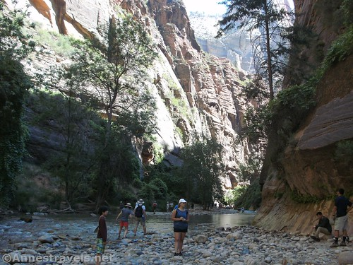 End of the trail - from here, you'll have to walk in the Virgin River to the Narrows of Zion National Park, Utah
