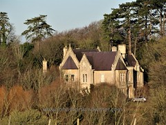 Cotswold Gothic