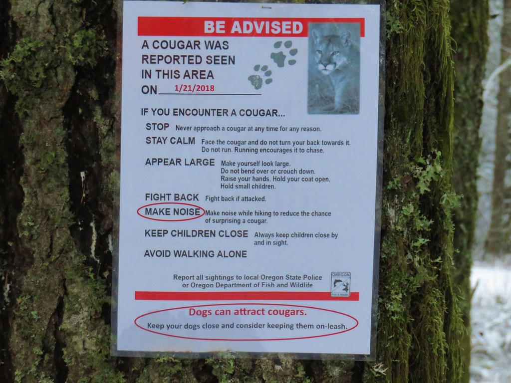 Cougar warning along the Powder House Trail