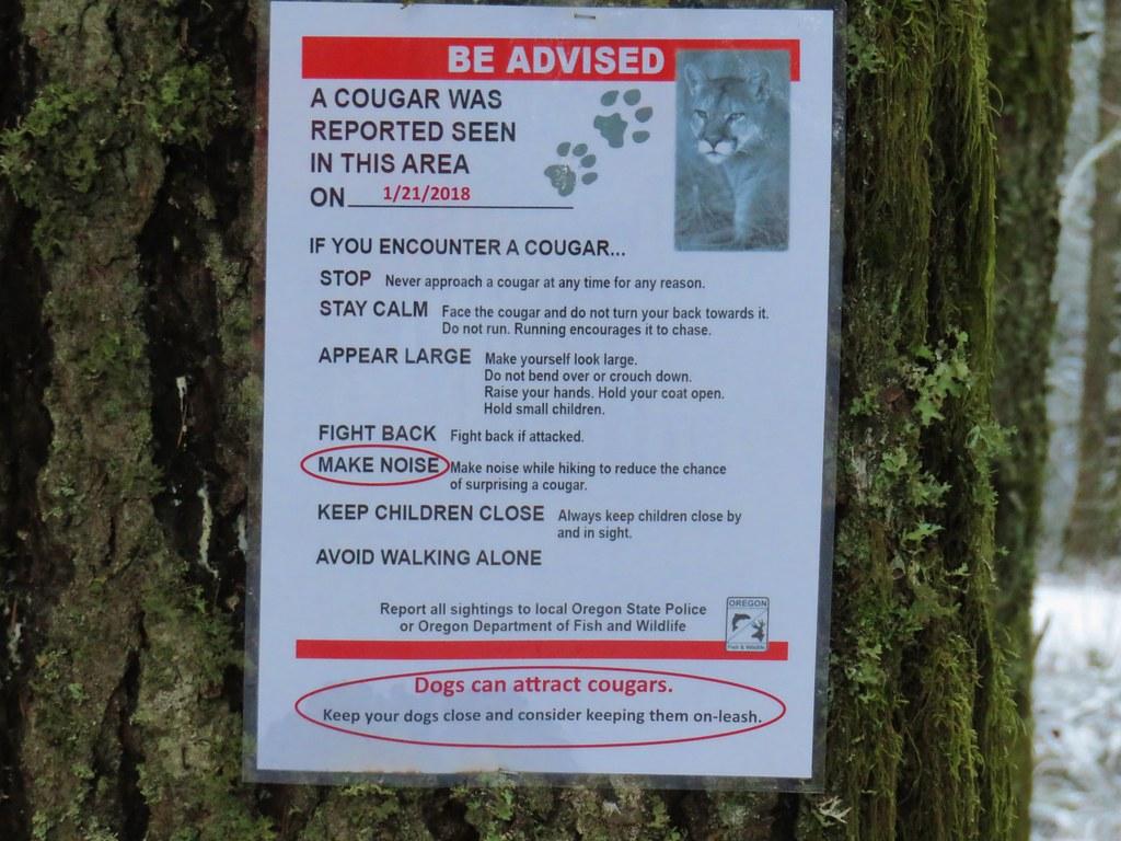 Cougar warning along the Powder House Trail