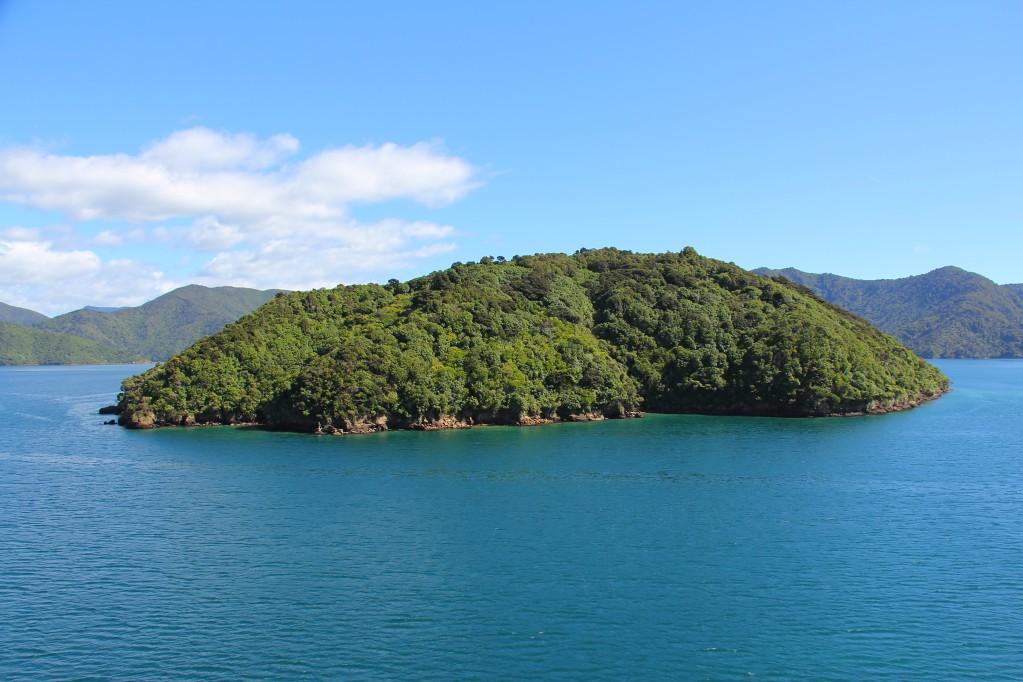 Паром Веллингтон - Пиктон: круиз с Северного острова на Южный остров Новой Зеландии