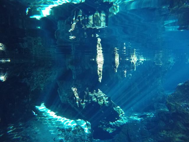 水中であることが信じられない世界
