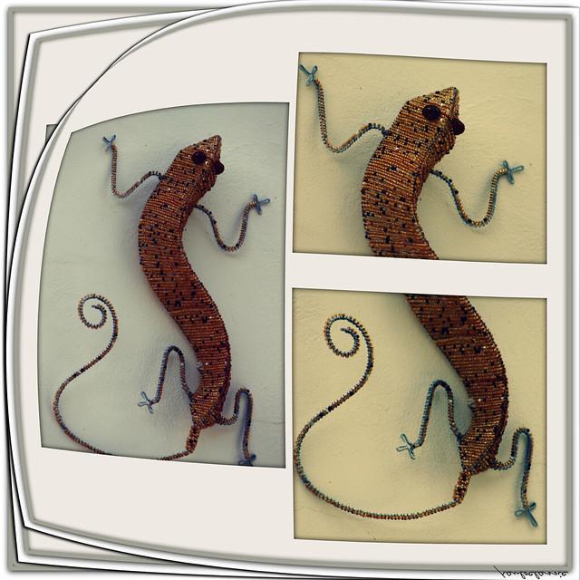 Kewl Chameleon