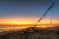 Cuki - Melbourne Beach, FL