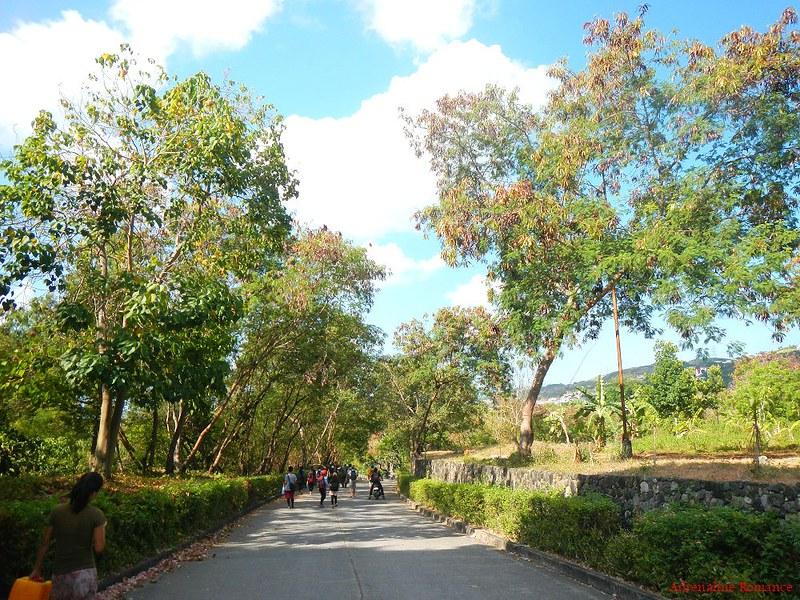 Celestial Gardens
