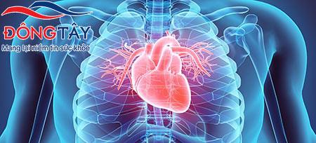 Phát hiện nguyên nhân gây rối loạn nhịp tim liên quan tới nồng độ canxi