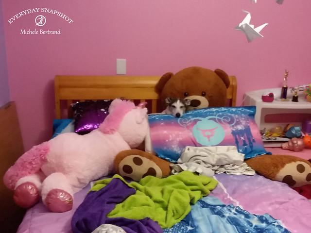 Where's Spencer