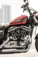 Harley-Davidson XL 1200 X Sportster Forty Eight Special 2018 - 5
