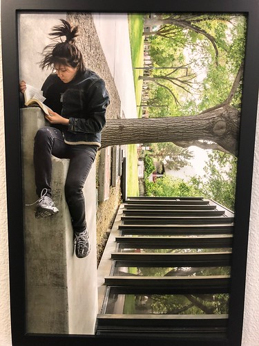 How I Read on Campus Photograph Student Union Permanent Collection 2016