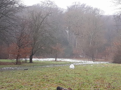 last of the December 2017 snow - Epping Forest