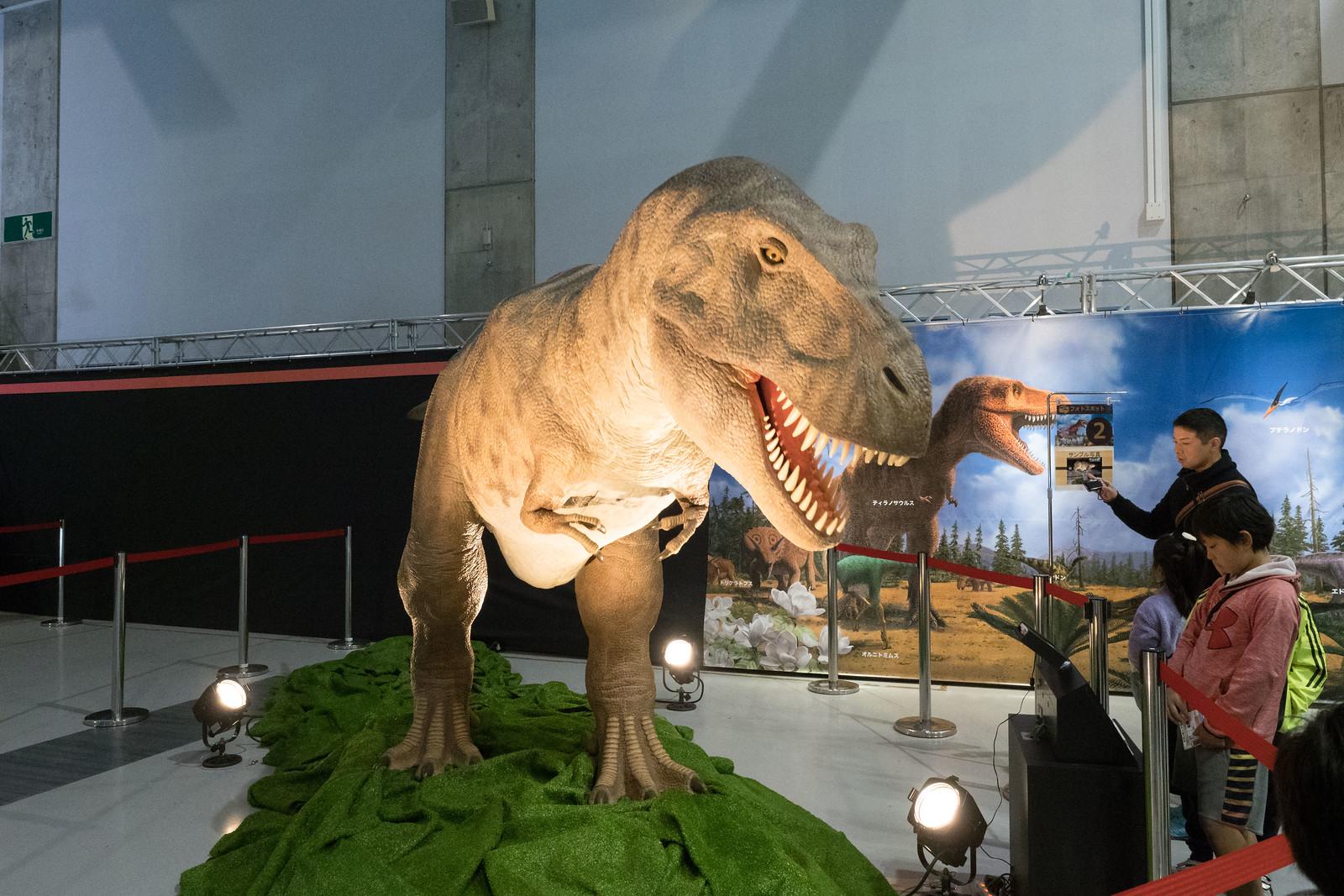 大恐竜博-50