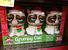 Grumpy Cat Christmas lights