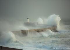 Storm-5