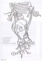 ATLHON-kolaborazioa (bizkarra)