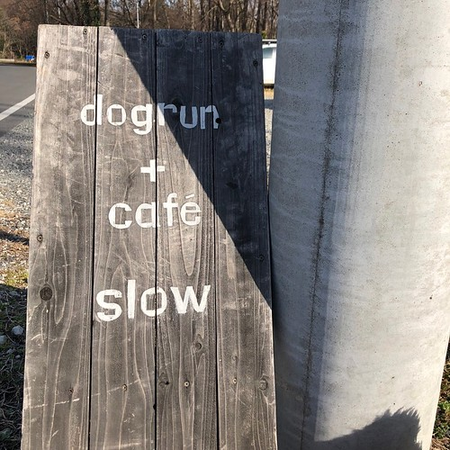 dogrun and cafe slow