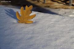 El otoño da paso al invierno