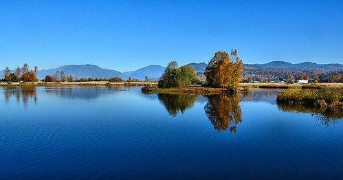 nikond7000 nikkor18200mmvrlens canada britishcolumbia bc abbotsford willbandcreekpark wetlands reflection