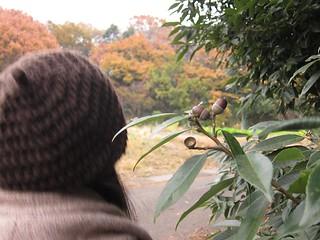 dongu_w8