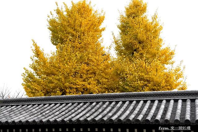 東本願寺03