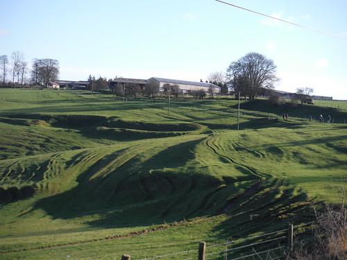 Streatley Warren (Iron Age field works by Bower Farm)