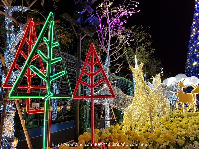Chirstmas light in Nakhon Ratchasima