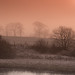 Kelvin Valley Morning II by tthef
