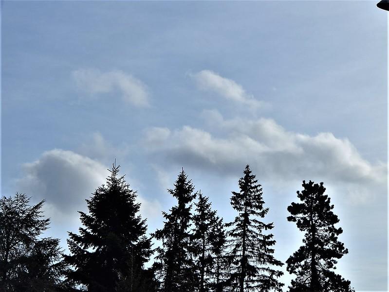Clouds 29.12 (7)