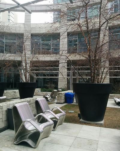 Anne Johnston Courtyard, December (3) #toronto #yongeandeglinton #mintomidtown #annejohnstoncourtyard #parks #winter