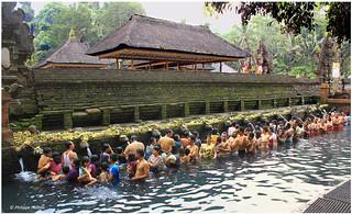4 - temple de Pura Tirta Empul © bains rituels