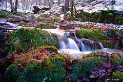 Ruisseau en décembre