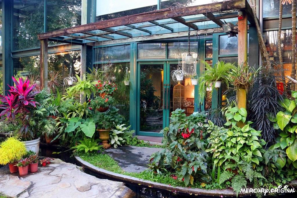 39159877382 11c75e89e2 b - 熱血採訪|新社千樺花園餐廳,森林裡的玻璃屋咖啡廳,品嚐無菜單法式料理