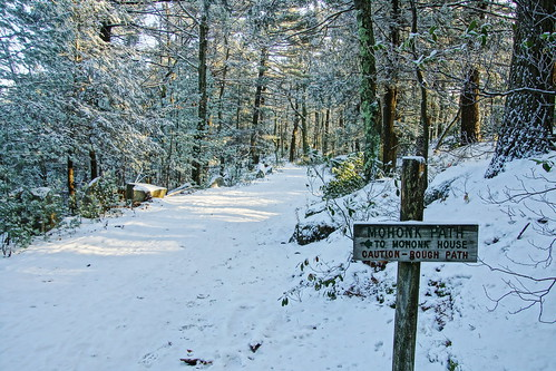 path road snow ulstercountynewyork fall2017 2017 fall autumn sign trail trailsign sonyslta65v mohonkmountainhouse mohonk shawangunkmountains shawangunk shawangunkridge shawangunks gunks trees forest northeast newyorkstate cold dicot woods