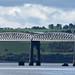 Tay Rail Bridge with pier stumps