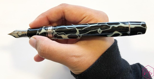 Review @ASCPens Bologna Wild Dark Side Fountain Pen - Magic Flex 10