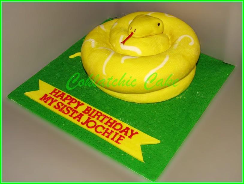 Cake Phyton Albino JOCHIE 20cm