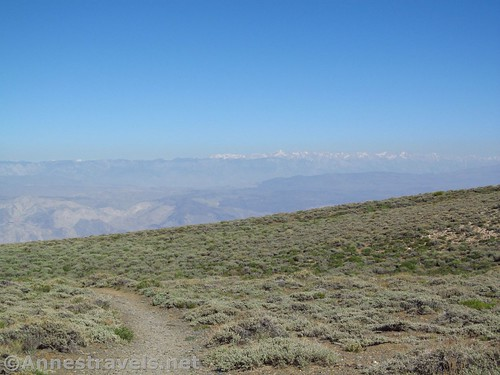 Views of the High Sierras from Arcane Meadows along the Telescope Peak Trail, Death Valley National Park, California