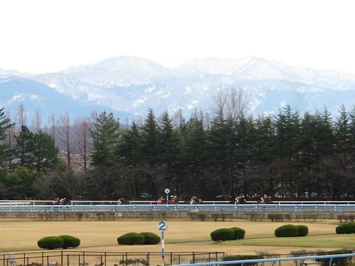 金沢競馬場の4コーナーに差し掛かる馬たち