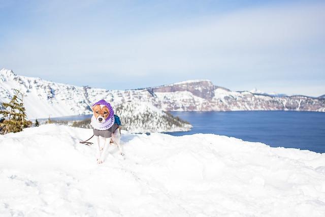 Crater Lake December-7341