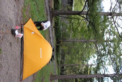 テントを設営