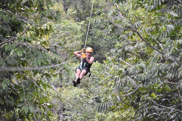 Zipline through the jungle