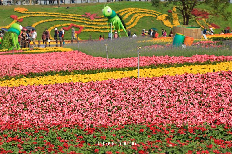 2017臺中國際花毯節53
