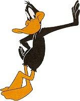 1aaa Duck 2