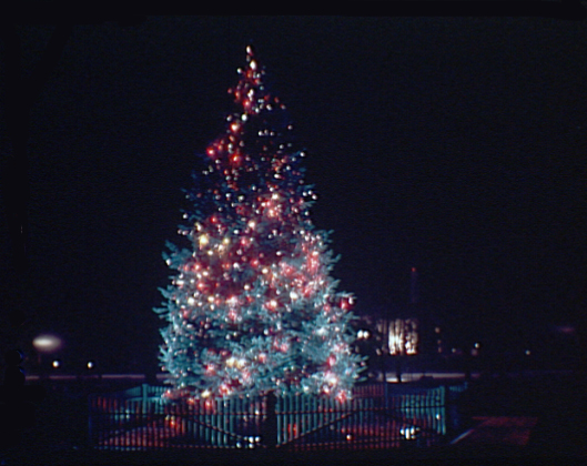 The National Christmas Tree in Lafayette Square, circa 1936-1938