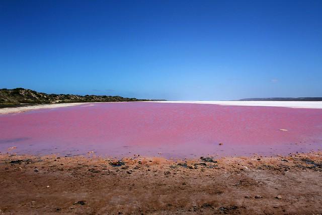 Pink Lake View