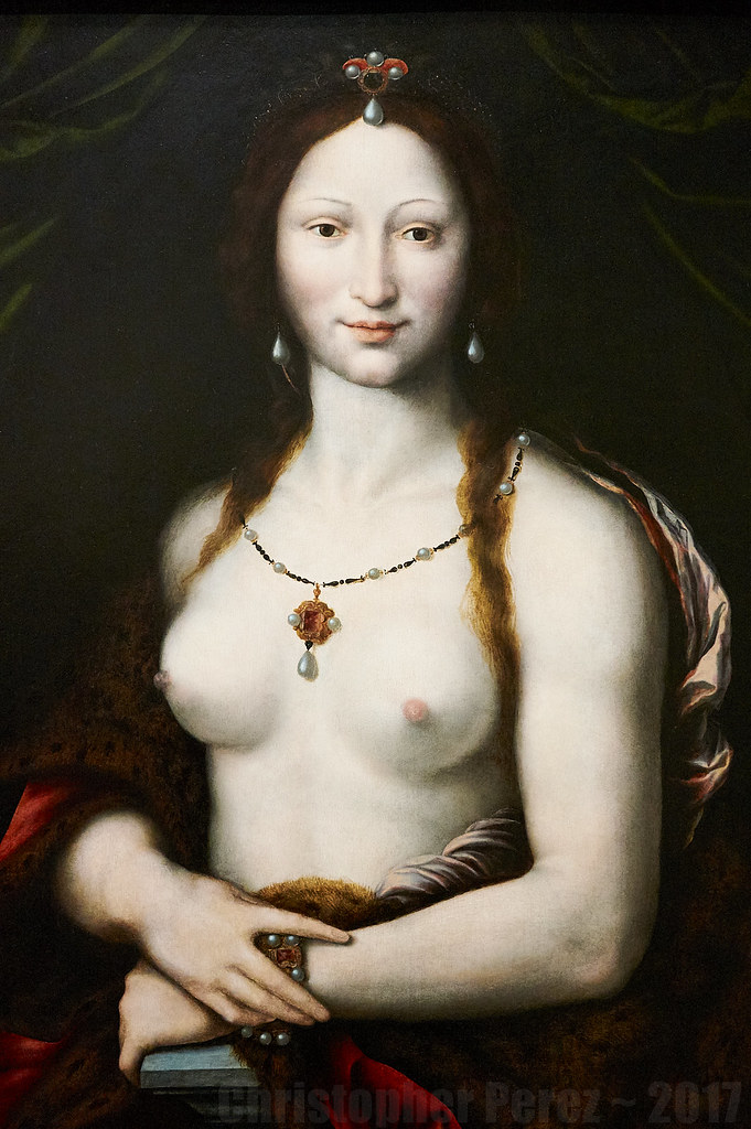 Dutch Painters in France ~ Francois I